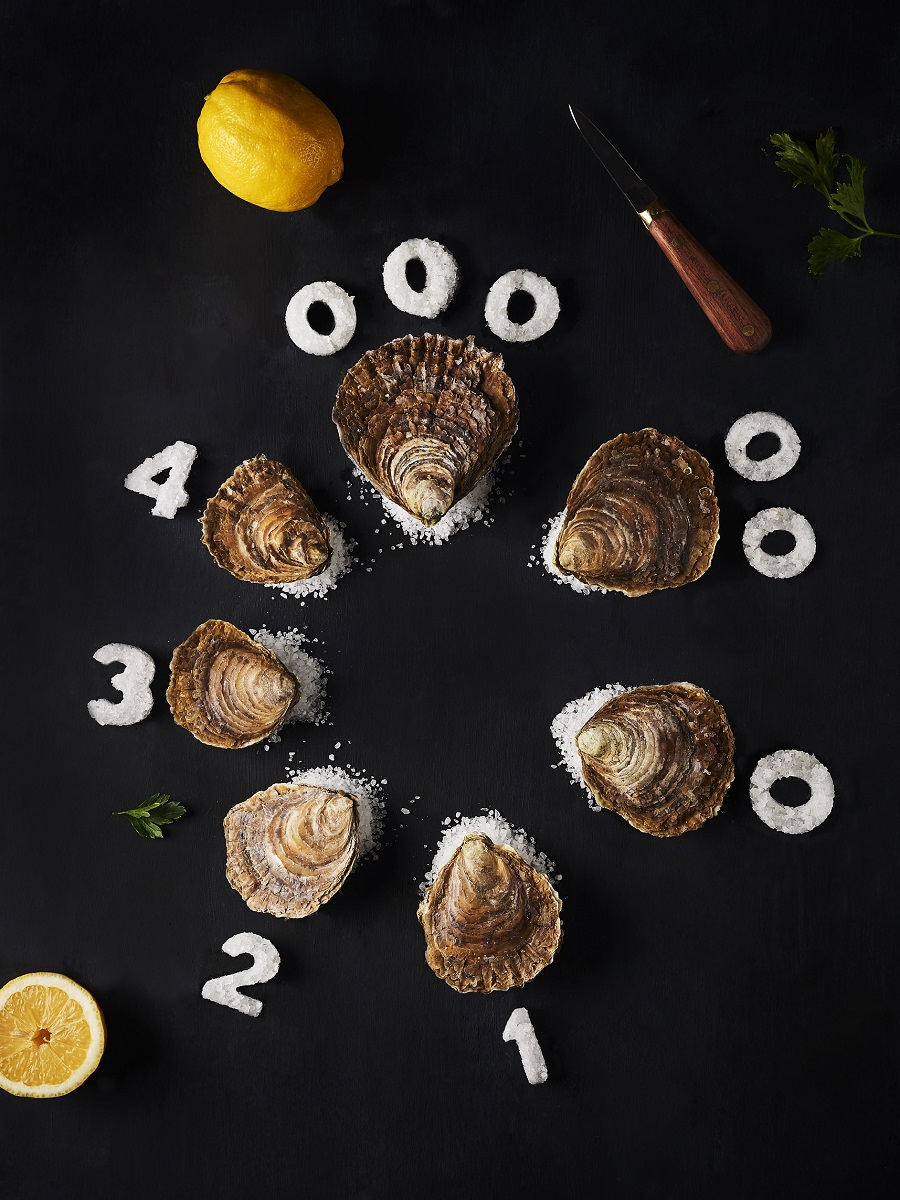 Flat and deep-water hollow oyster producers